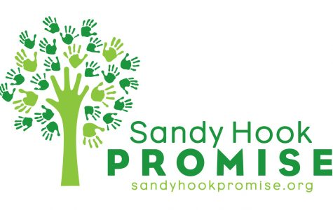 The Sandy Hook Promise