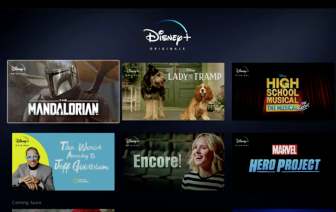 Disney Plus? The End of Netflix?