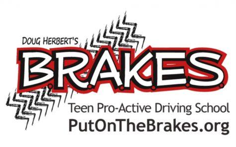 B.R.A.K.E.S Driving School